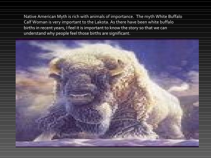 Native American the White Buffalo  Mercer Online