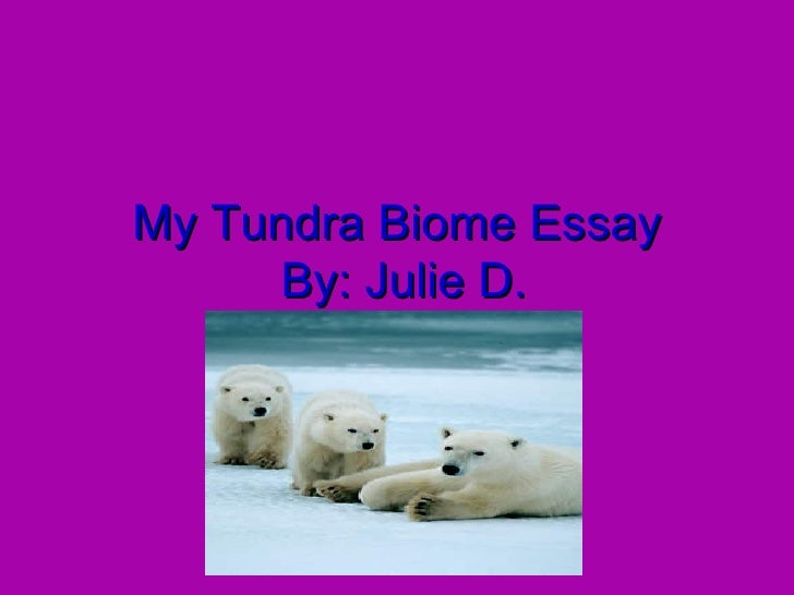 My Tundra Biome Essay  By: Julie D.