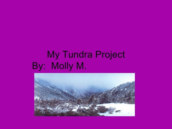 My Tundra Project By:  Molly M.
