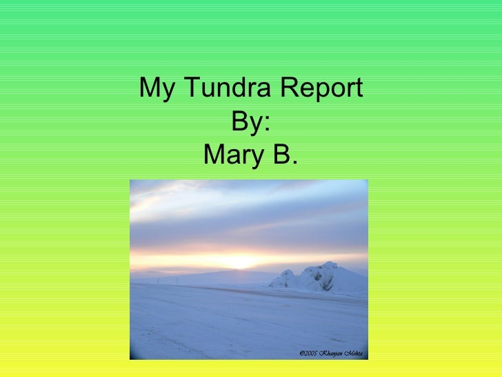 My Tundra Report By: Mary B.