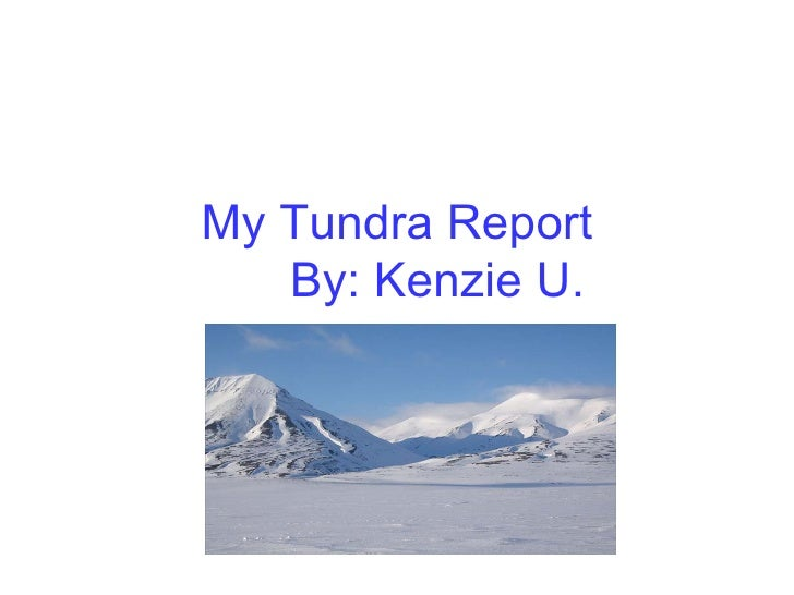 My Tundra Report   By: Kenzie U.