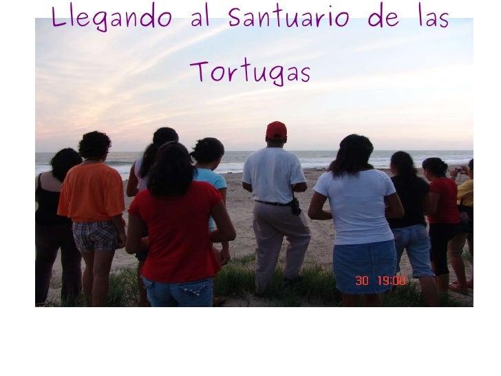 Llegando al Santuario de las Tortugas