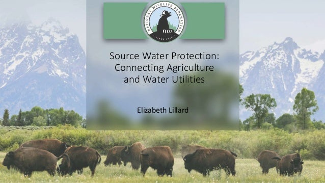 Source Water Protection: Connecting Agriculture and Water Utilities Elizabeth Lillard