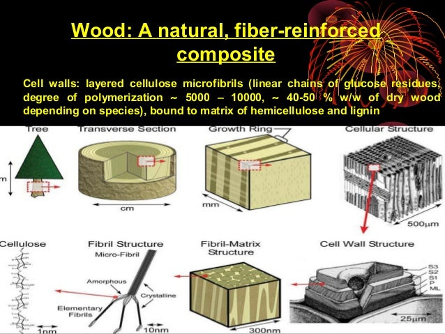 Green Composites from Natural Resources