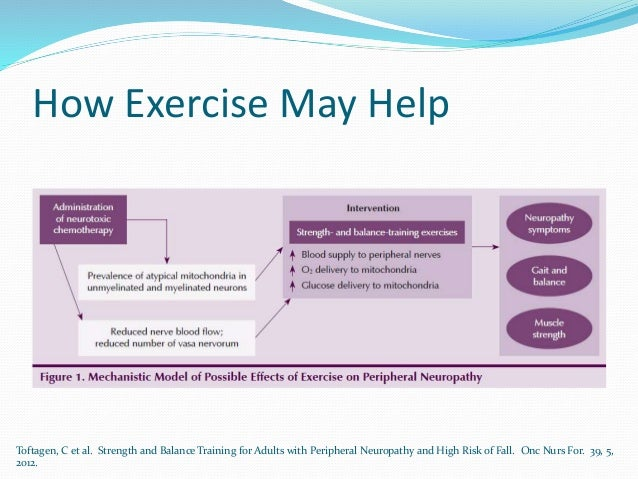 How Exercise May Help Toftagen, C et al. Strength and Balance Training for Adults with Peripheral Neuropathy and High Risk...