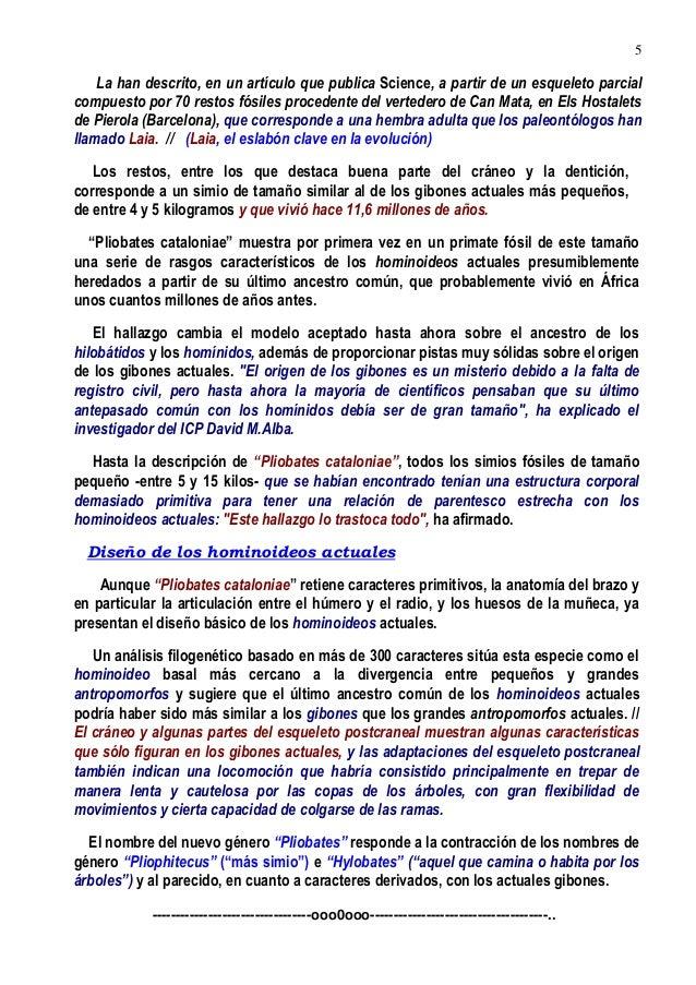 Excepcional Anatomía De Un Vertedero Bosquejo - Anatomía de Las ...