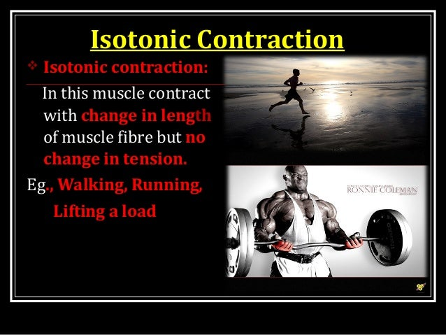 isotonic contraction and the effect of load on skeletal muscles essay Essay on skeletal muscle physiology 5322 words may 27th, 2011 22 pages  to identify the conditions under which muscle contraction is isometric or isotonic 7 to describe in terms of length and force the  essay about exercise 2 skeletal muscle.