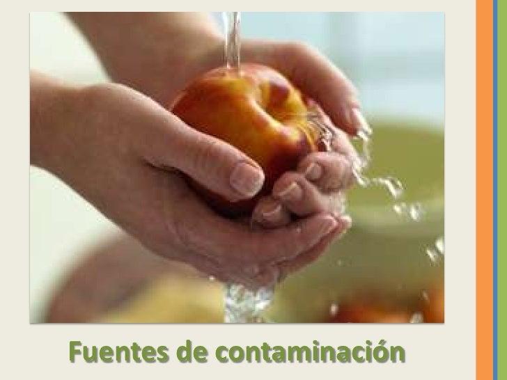 Calidad de los alimentos - Fuentes de contaminacion de los alimentos ...