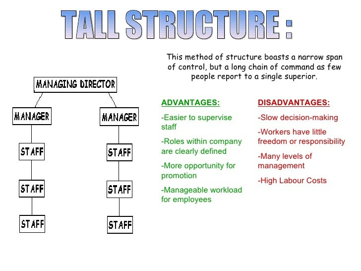 advantages and disadvantages of flat organisation structure Such companies have many advantages over their companies that use flat structures to stay it is dispersed throughout the organisation with an emphasis on.