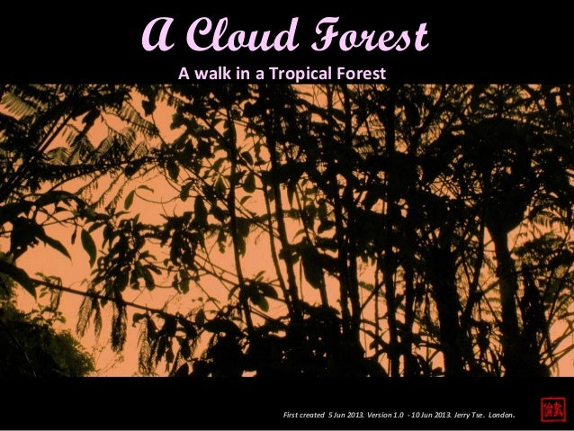 First created 5 Jun 2013. Version 1.0 - 10 Jun 2013. Jerry Tse. London.A Cloud ForestA walk in a Tropical Forest