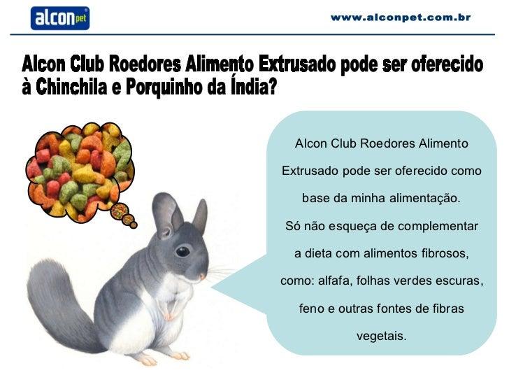 www.alconpet.com.br Alcon Club Roedores Alimento Extrusado pode ser oferecido  à Chinchila e Porquinho da Índia? Alcon Clu...