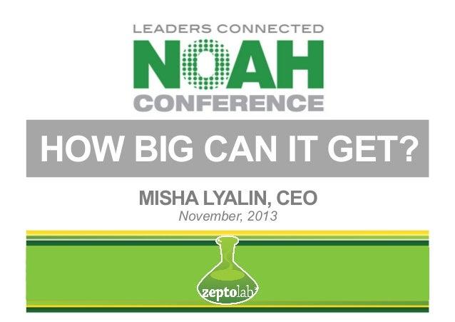 HOW BIG CAN IT GET? MISHA LYALIN, CEO November, 2013
