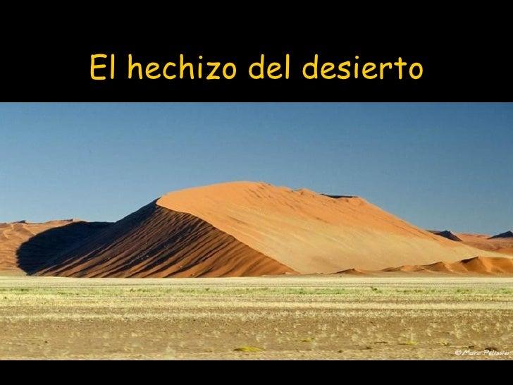 El hechizo del desierto