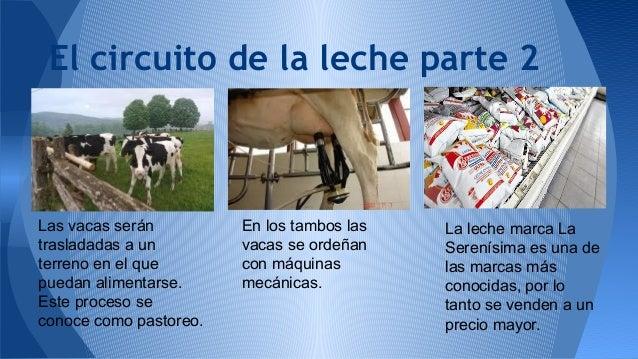 Circuito De La Leche : Nº luce y lau
