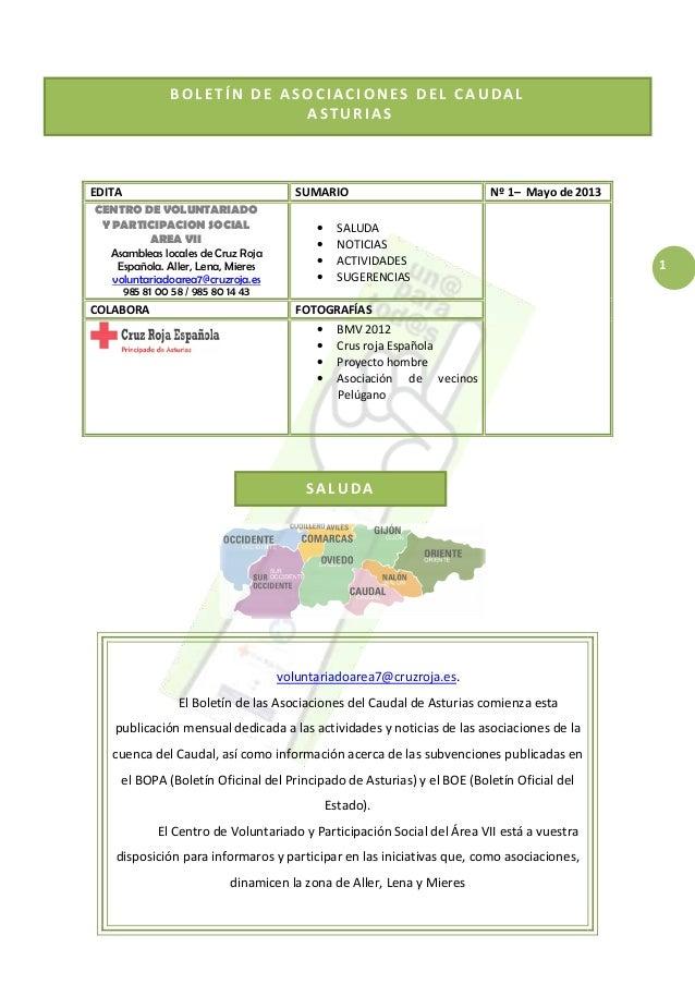 1 BOLETÍN DE ASOCIACIONES DEL CAUDAL ASTURIAS SALUDA EDITA SUMARIO Nº 1– Mayo de 2013 CENTRO DE VOLUNTARIADO Y PARTICIPACI...
