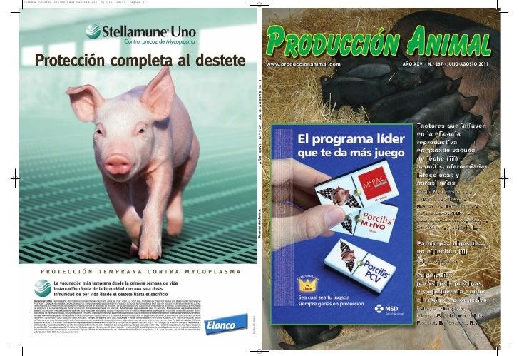 AÑO XXVI - N.º 267 - JULIO-AGOSTO 2011      Factores que influyen      en la eficacia      reproductiva      en ganado vac...