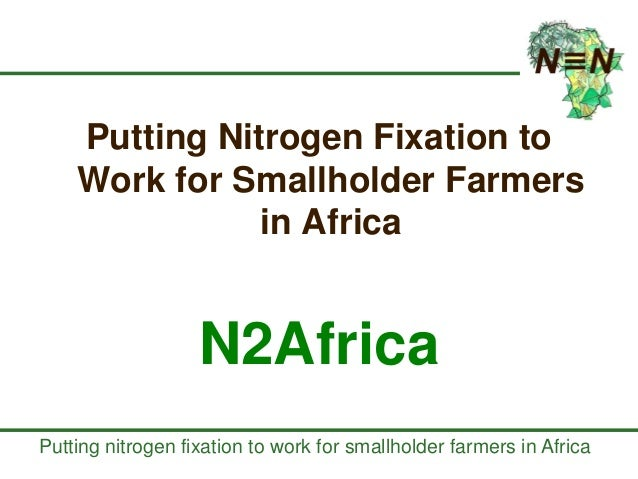Putting nitrogen fixation to work for smallholder farmers in Africa Putting Nitrogen Fixation to Work for Smallholder Farm...
