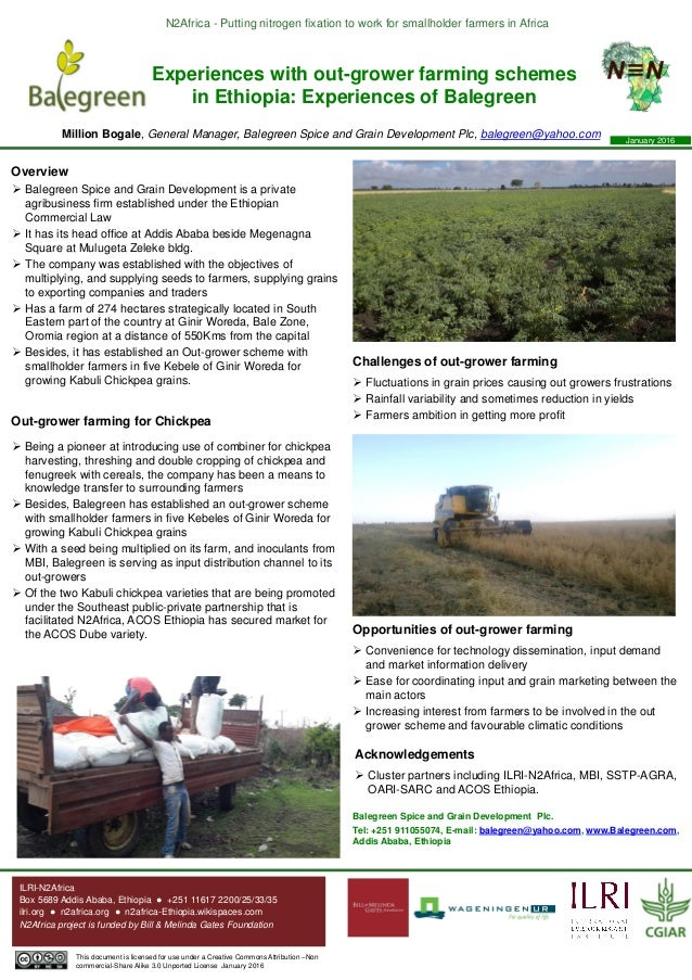 N2Africa - Putting nitrogen fixation to work for smallholder farmers in Africa Experiences with out-grower farming schemes...