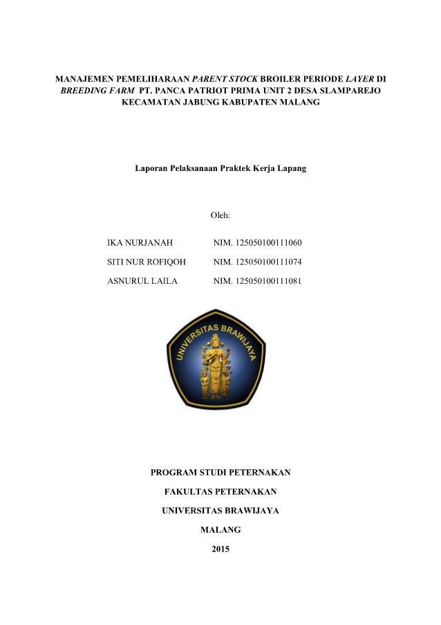 Manajemen Pemeliharaan Parent Stock Broiler Periode Layer di Breeding Farm PT. Panca Patriot Prima Unit 2 Desa Slamparejo,...