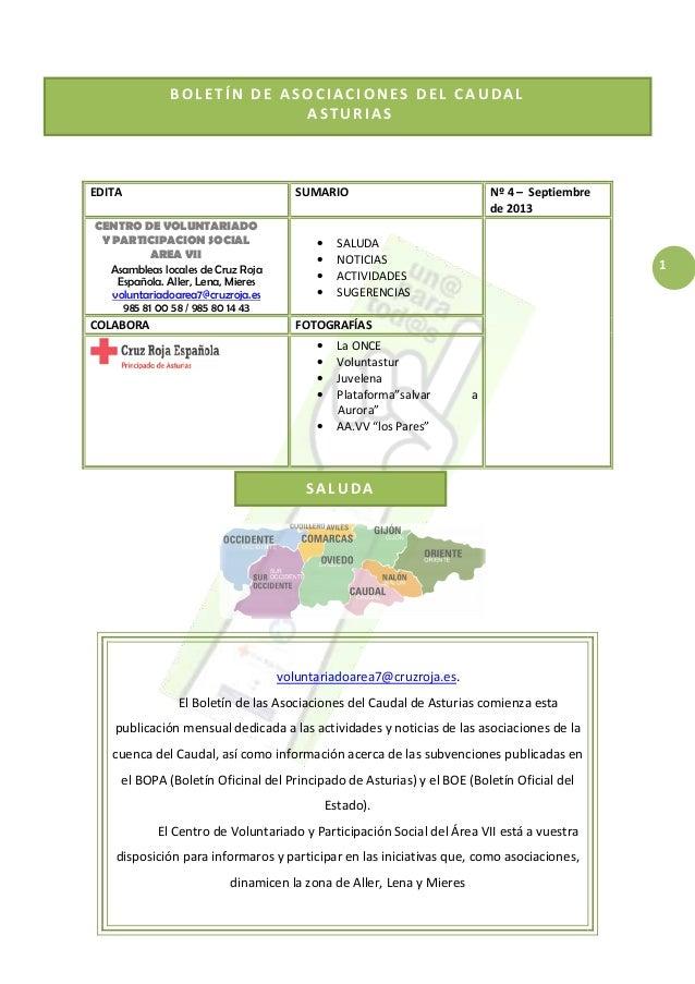 1 BOLETÍN DE ASOCIACIONES DEL CAUDAL ASTURIAS SALUDA EDITA SUMARIO Nº 4 – Septiembre de 2013 CENTRO DE VOLUNTARIADO Y PART...
