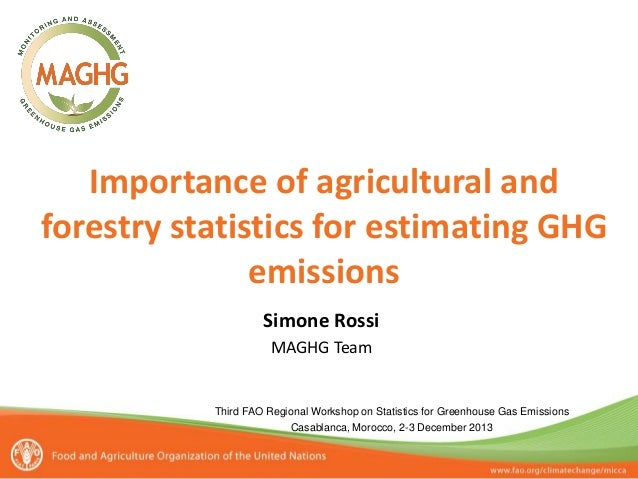 Importance of agricultural and forestry statistics for estimating GHG emissions Simone Rossi MAGHG Team  Third FAO Regiona...
