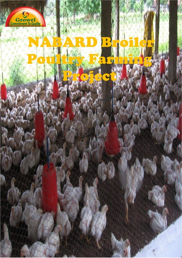 Nabard Broiler Farming Project