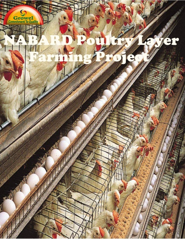 Nabard Layer Farming Project