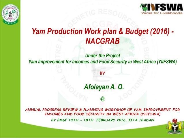 Yam Production Work plan & Budget (2016) - NACGRABvvvUnder ...