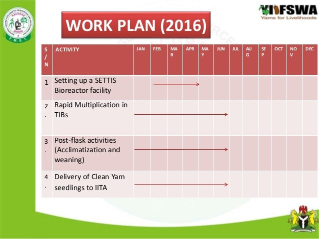 Yam Production Work Plan  Budget   Nacgrab Under The Projec