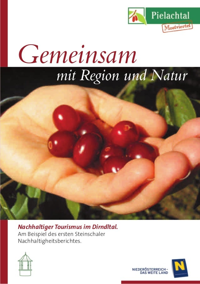 Nachhaltiger Tourismus im Dirndltal. Am Beispiel des ersten Steinschaler Nachhaltigheitsberichtes. Gemeinsam mit Region un...