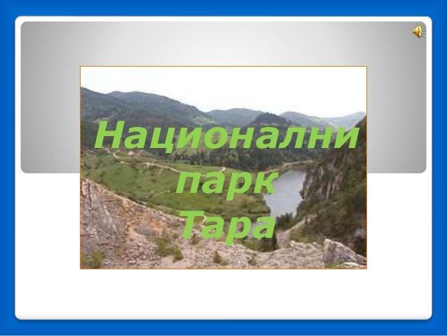 Национални парк Тарa