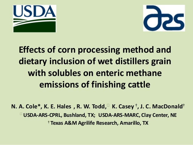 Effects of corn processing method anddietary inclusion of wet distillers grainwith solubles on enteric methaneemissions of...