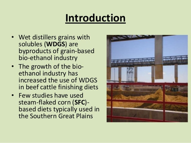 Effects of Corn Processing Method and Dietary Inclusion of Wet Distillers Grains with Solubles (WDGS) On Enteric Methane Emissions of Finishing Cattle Slide 2