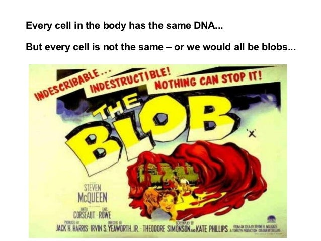 Every cell in the body has the same DNA...But every cell is not the same – or we would all be blobs...
