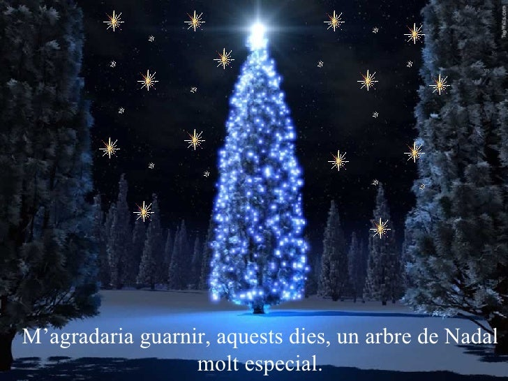 M'agradaria guarnir, aquests dies, un arbre de Nadal molt especial.