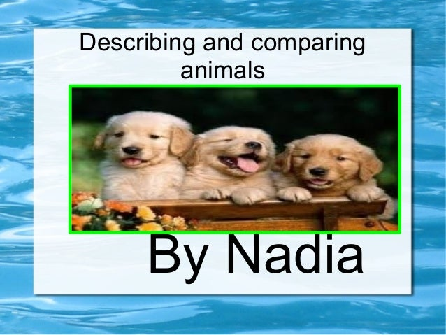 Describing and comparinganimalsBy Nadia