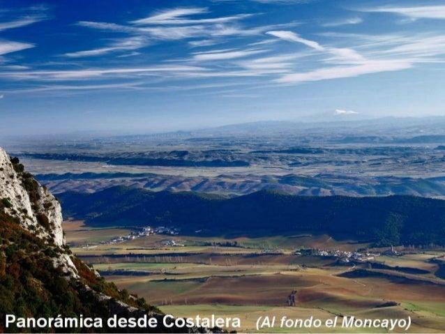 Campos de Mirafuentes (Al fondo la Sierra de Codés y el Ioar)