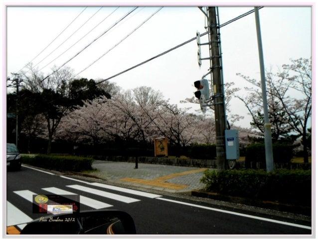 4 Jardin Botanico Nagoya Japón 2011