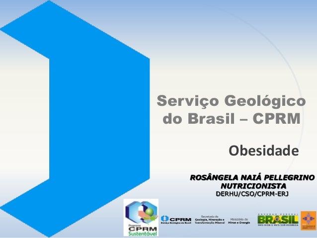 Serviço Geológico do Brasil – CPRM  Obesidade ROSÂNGELA NAIÁ PELLEGRINO NUTRICIONISTA DERHU/CSO/CPRM-ERJ