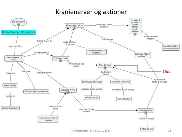 Kranienerver og aktioner  Obs !  Nakkesmerter. T. Helstrup. 2014 15