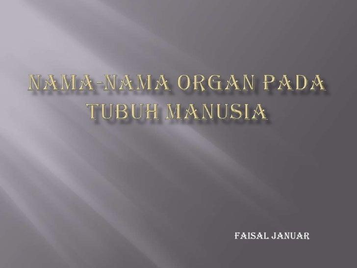 NAMA-NAMA ORGAN PADA TUBUH MANUSIA<br />Faisal Januar<br />