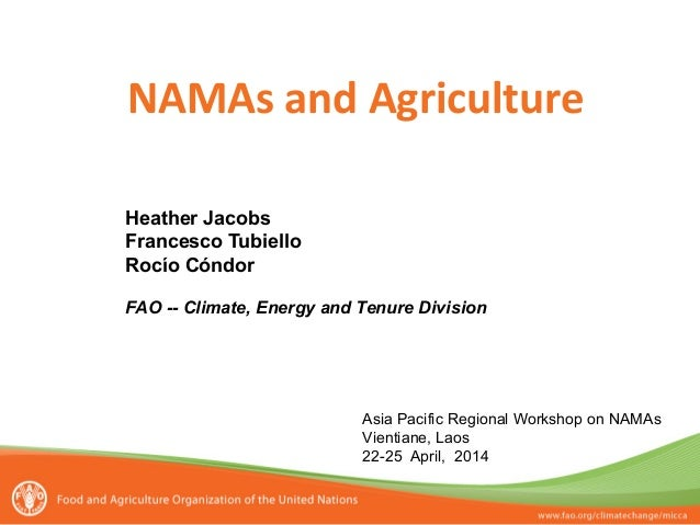 NAMAs  and  Agriculture      Heather Jacobs Francesco Tubiello Rocío Cóndor FAO -- Climate, Energy and Tenure Divi...