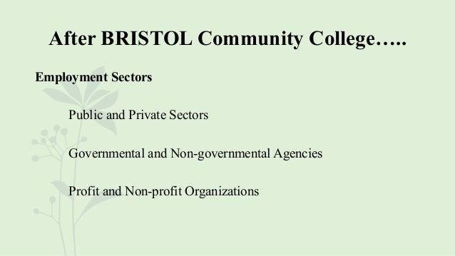After BRISTOL Community College….. Employment Sectors Public and Private Sectors Governmental and Non-governmental Agencie...