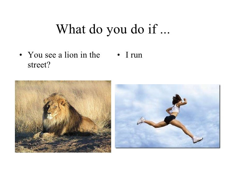 What do you do if ... <ul><li>You see a lion in the street? </li></ul><ul><li>I run </li></ul>