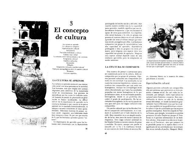 El codigo cultural pdf clotaire chaussures