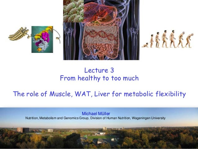 Lecture 3From healthy to too muchThe role of Muscle, WAT, Liver for metabolic flexibilityMichael MüllerNutrition, Metaboli...