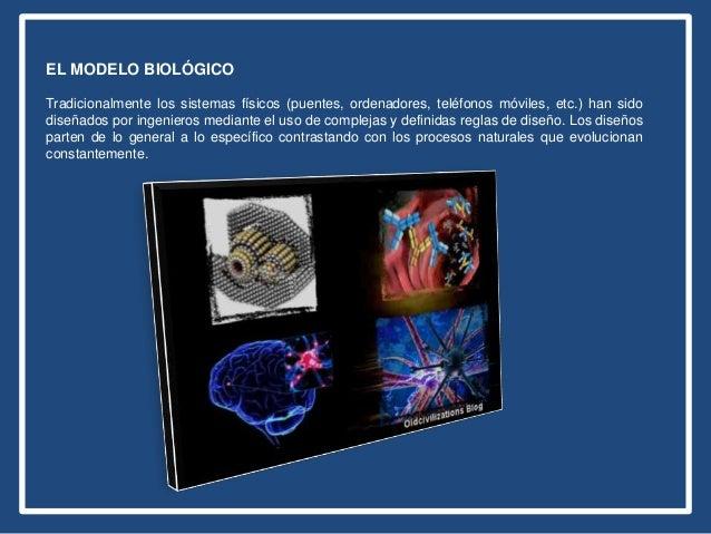 EL MODELO BIOLÓGICO Tradicionalmente los sistemas físicos (puentes, ordenadores, teléfonos móviles, etc.) han sido diseñad...