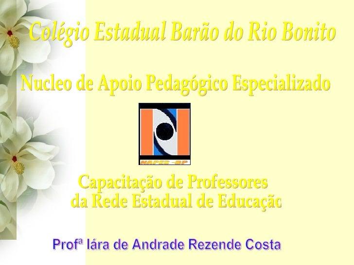 Colégio Estadual Barão do Rio Bonito Nucleo de Apoio Pedagógico Especializado Capacitação de Professores da Rede Estadual ...