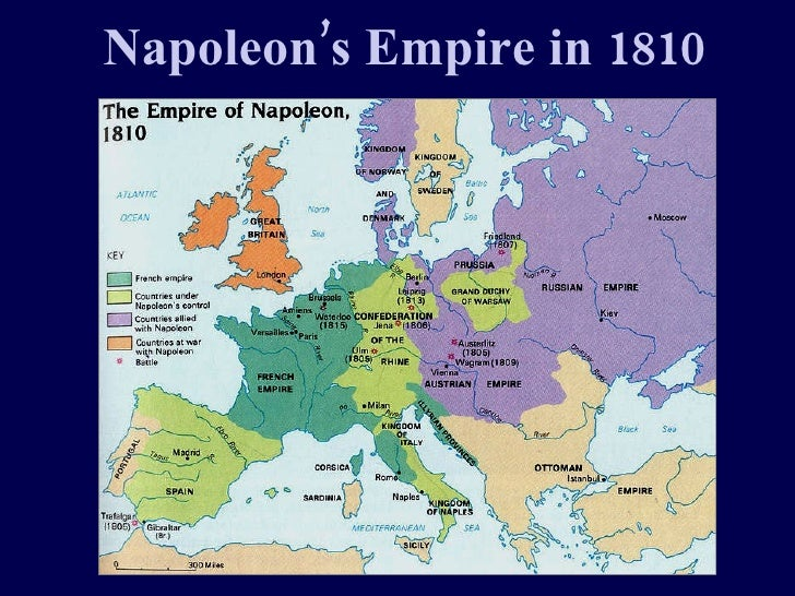 Napoleon For Web
