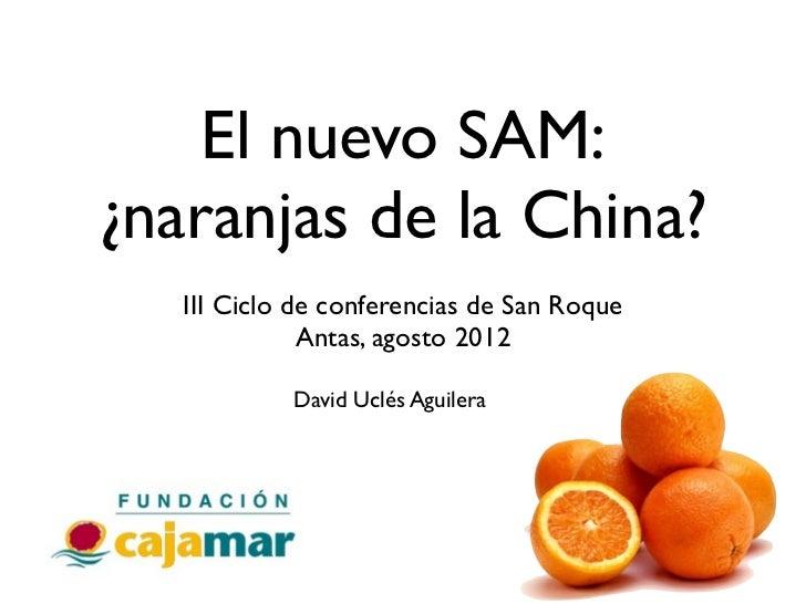 El nuevo SAM:¿naranjas de la China?   III Ciclo de conferencias de San Roque              Antas, agosto 2012            Da...